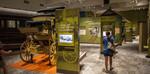 Adirondack Experience, Museum at Blue Mountain Lake