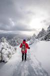 Nick Spooner_Giant Mountain Ridge Trail Hike