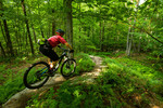 Mountain Biking Dewey