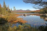 Wolf Pond