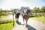 Heritage, Harvest and Horse Festival