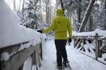 Saranac Lake Snowshoeing